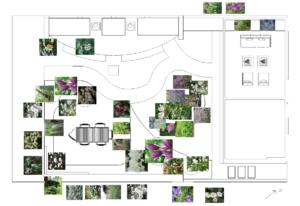 Deze afbeelding heeft een leeg alt-attribuut; de bestandsnaam is Beplantingsplan-300x206.png