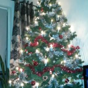 winnaar Kerstbomenwedstrijd